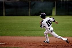baseball club-1613495_1280